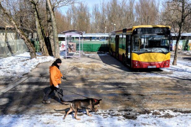 Autobus dla zwierząt ze schroniska UM Warszawa
