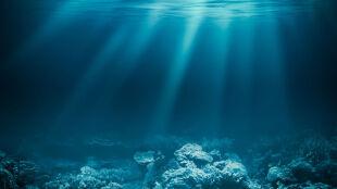 """Zmiany klimatu zaburzają procesy zachodzące w oceanach. Robią to """"ponad sześć razy szybciej"""""""