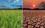 Jak będzie wyglądało lato 2050 roku?