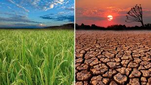 """Co się stanie, jeżeli nie zatrzymamy zmian klimatu? """"W ciągu dwóch tygodni jesteśmy wyzerowani"""""""