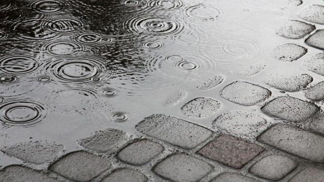 Pogoda na dziś: środa z deszczem, maksymalnie 22 stopnie