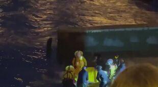 Uratowali młodego wieloryba z Tamizy